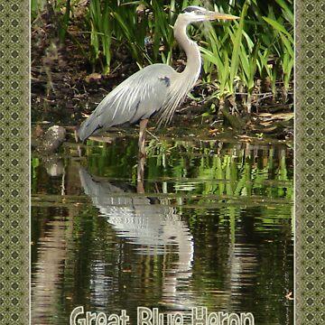 Great Blue Heron in Homosassa, Florida by TravlynWomyn