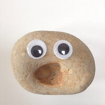 Very surprised pebble von Suziebh