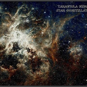 STAR CONSTELLATIONS : Tarantula Nebula Print by posterbobs