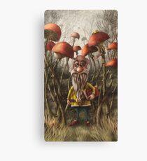 Aalbert Van Edeborg from Mushroom Mountains Canvas Print