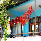 Washing And Drying Pamukkale Turkey by Deirdreb
