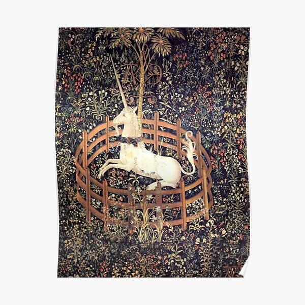 Unicorn In Captivity  Poster