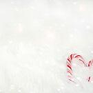 Süße Weihnachtsliebe von Maria Dryfhout