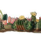 Cacti repeat vintage cactus border by Epic Splash Creations