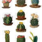 Cacti repeat pattern vintage cactus 1800s by Epic Splash Creations