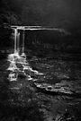 Weeping Rock, Wentworth Falls by Adriana Glackin