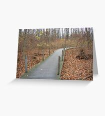 Wildwood Park - Toledo Metroparks Greeting Card