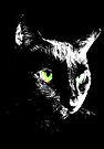 Black Cat 4 by Etakeh