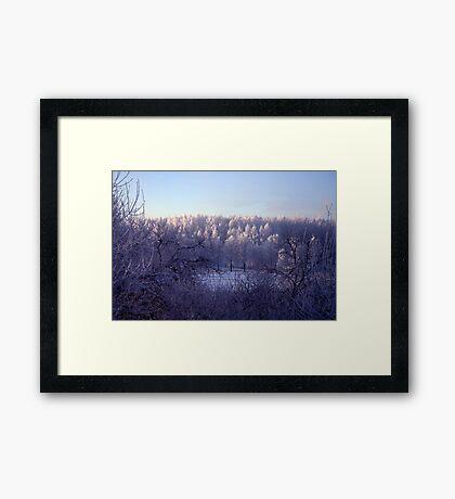 Frost everywhere Framed Print
