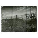 Desert Twilight  by Scott  Nordstrom
