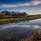 Tranquillity at Potman's Heath by Dave Godden