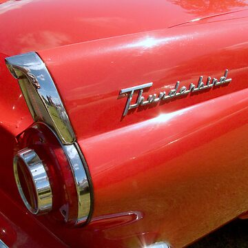 T' Bird, the Car by johnny2sheds