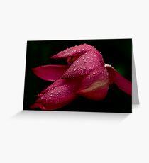 Lotus  Greeting Card