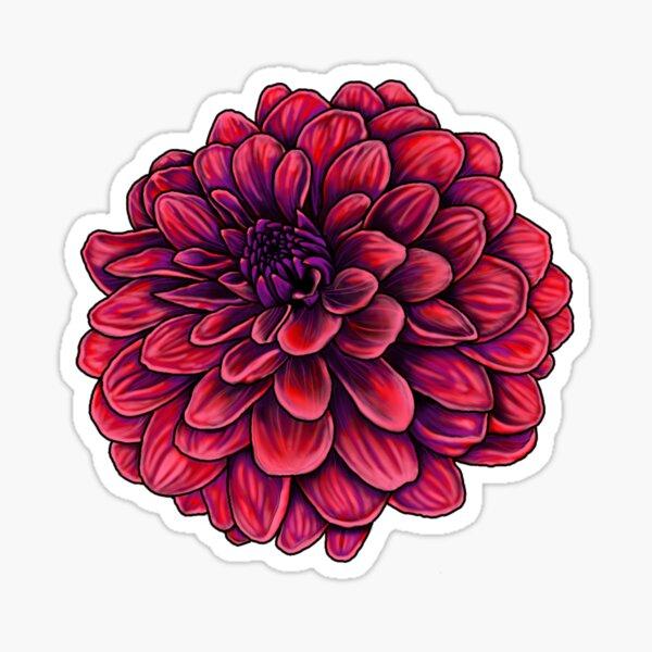 Dahlia Sticker