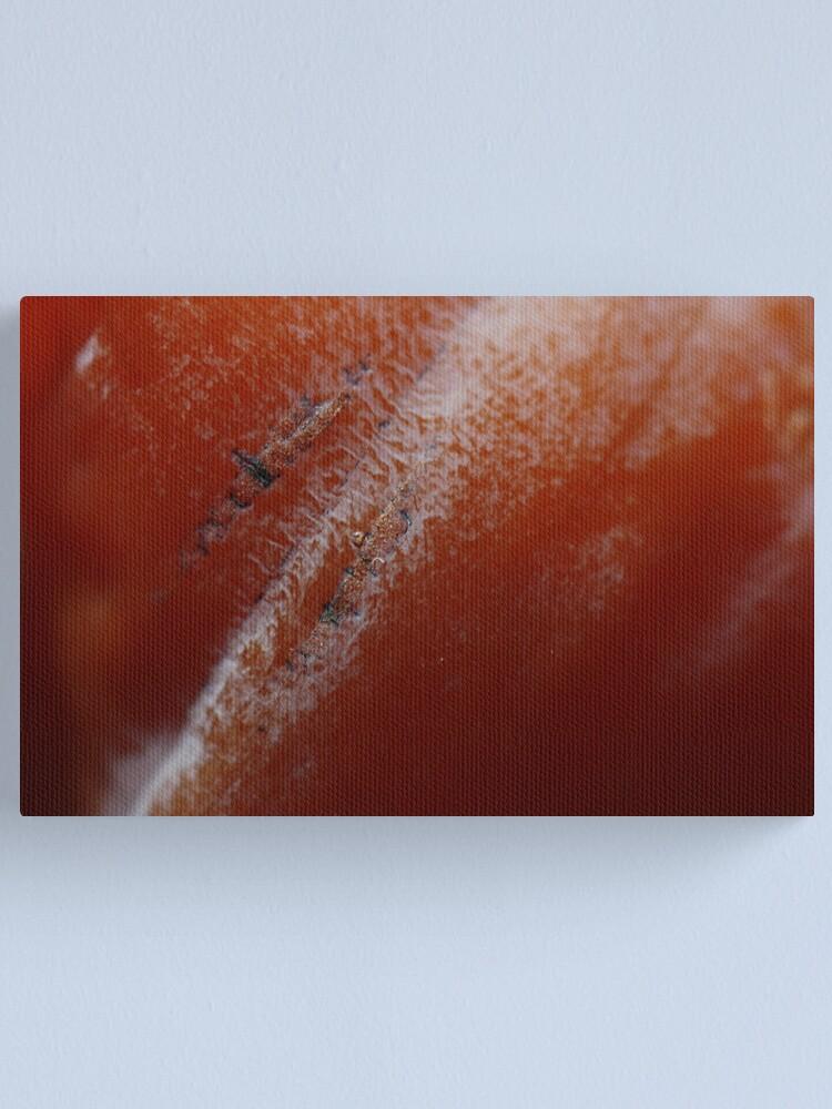 Alternate view of kaki scars Canvas Print
