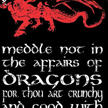 meddle not in the affairs of dragons by B0red