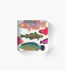 Colorful Abstract Fish Art  Acrylic Block