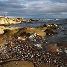 sandstone shore by TerrillWelch