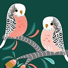 Budgie Lovers by Emma Whitelaw