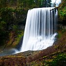 Middle North Falls, Silver Creek Oregon by Albert Dickson