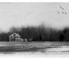 Homestead by Mary Ann Reilly