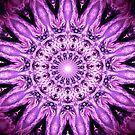 Purple Flower Mandala by Costa100