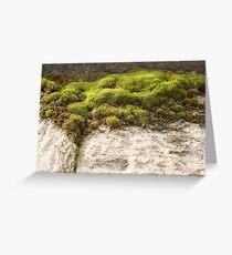 Miniature Landscape Greeting Card