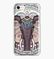 Wild Symmetry #2 iPhone Case/Skin