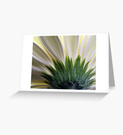 Beauty underneath Greeting Card