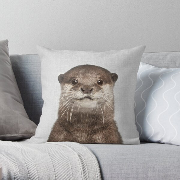 Otter - Colorful Throw Pillow