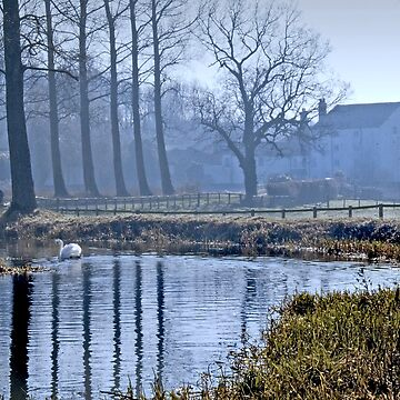The Mill and the Swan (Bintree Norfolk) by johnny2sheds