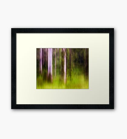 Mitchell Park ~ an impressionist's view III Framed Print