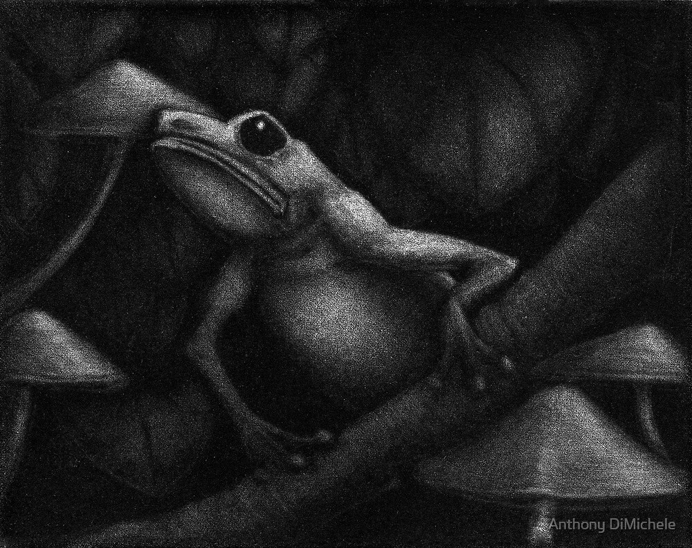 tree frog  by Anthony DiMichele