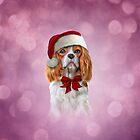 Dog Cavalier King Charles Spaniel in red hat of Santa Claus by bonidog