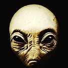 Alien Head Graphic Art Design We Are Not Alone by VIDDAtees