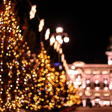 The square of Trieste during Christmas time by zakaz86