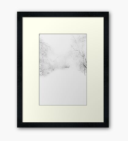 Through the Blizzard II Framed Print