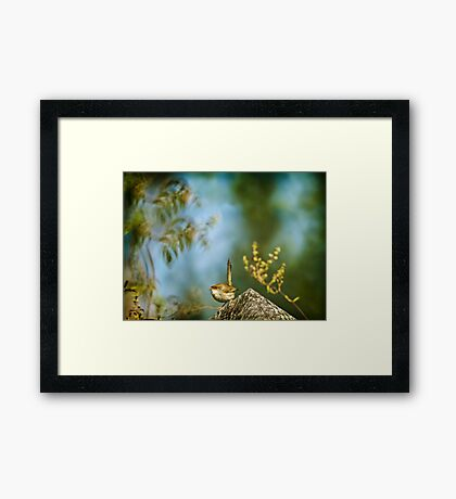 ~ a visitor in the garden ~ Framed Print