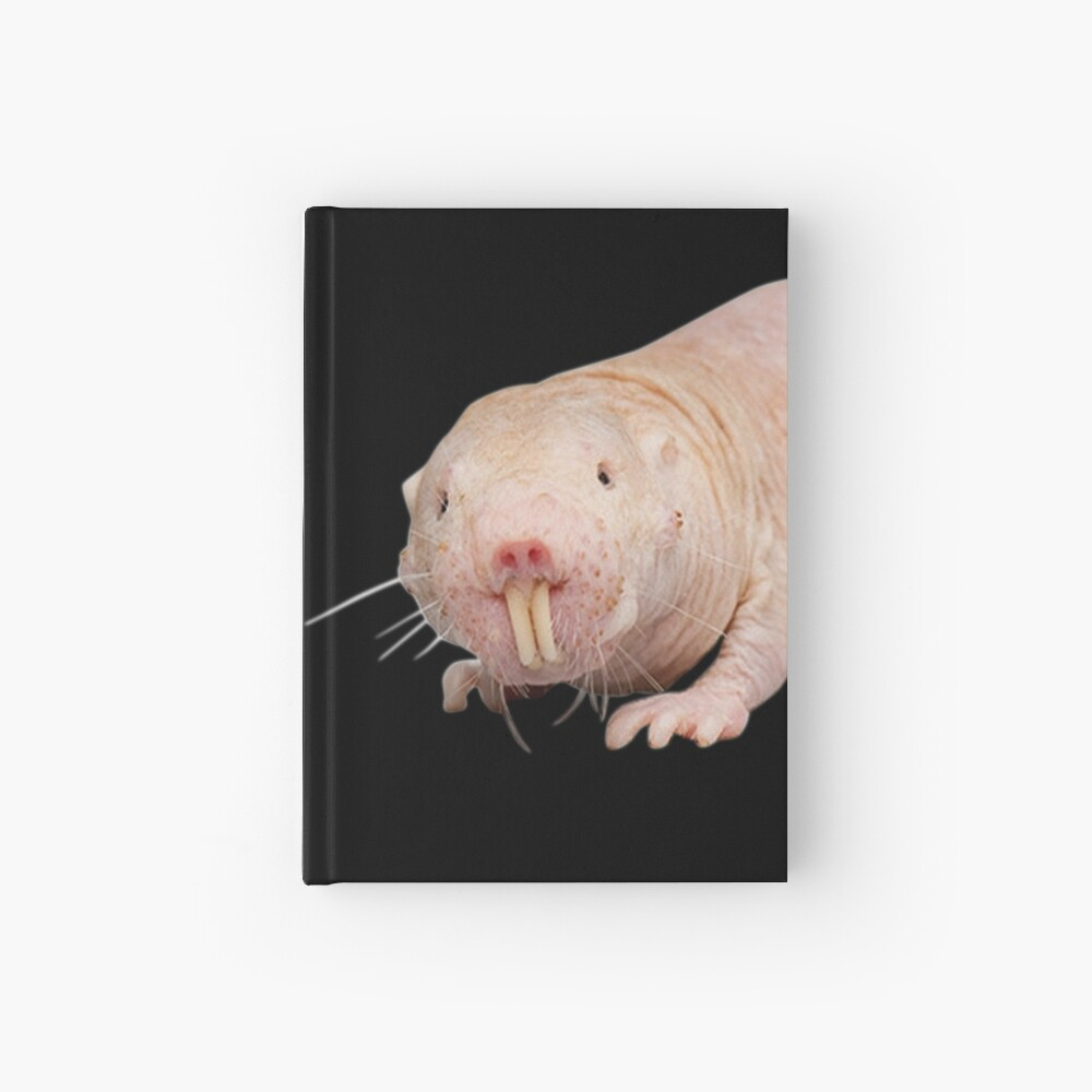 Naked Mole Rat Stofftasche Einkaufstasche Brooklyn Fun Jake 99 Gina Nacktmull