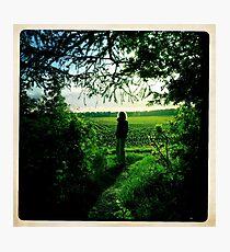 Mid summer  Photographic Print