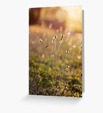 ~ visions of inspiration are never far away ~ Greeting Card