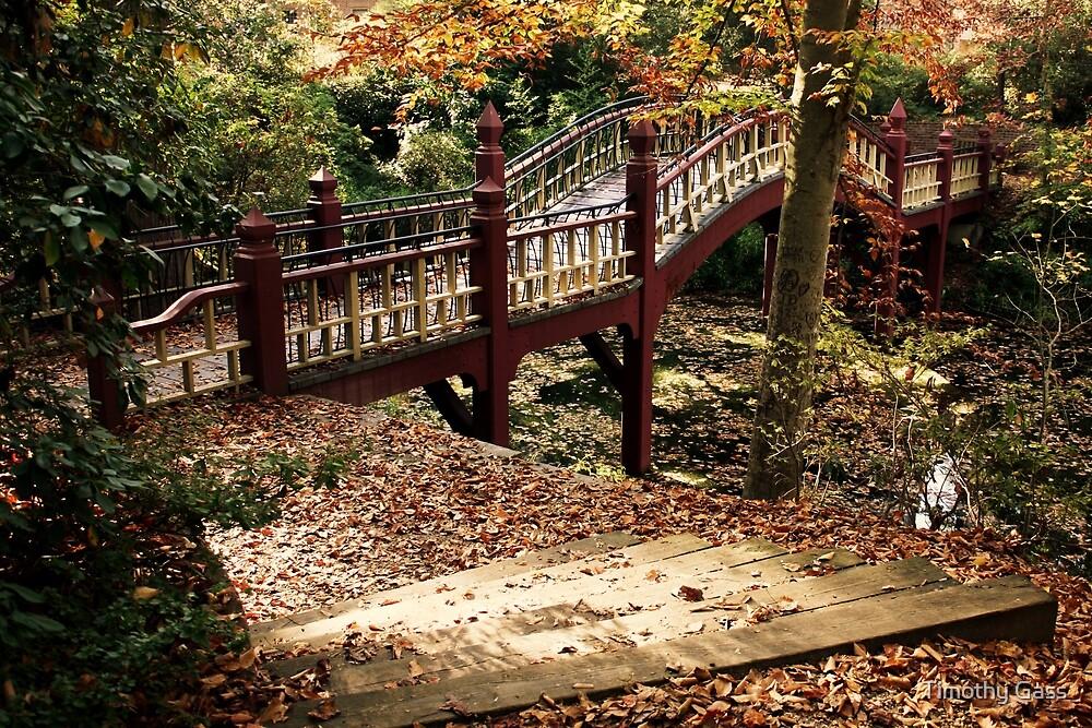 Crim Dell Bridge by Timothy Gass