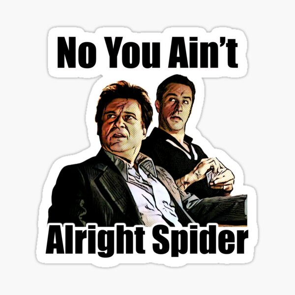 You Aint alright spider Sticker