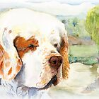 Sal - a favourite Clumber Spaniel by JAN IRVING