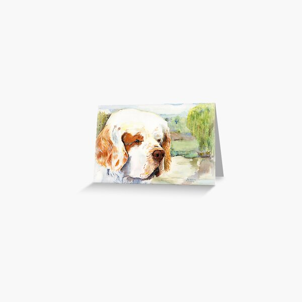 Sal - a favourite Clumber Spaniel Greeting Card