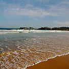 Australian Beach Near Terrigal by edesigned
