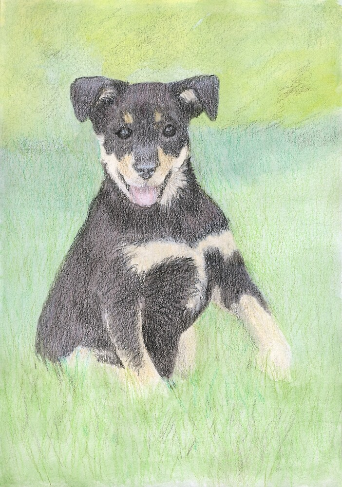 Puppy Portrait by Linda Ursin
