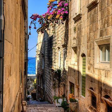 Bougainvillea in a Korčula Lane by tomg