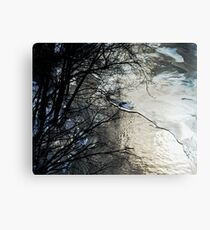 River With the Pebbled Bottom Canvas Print