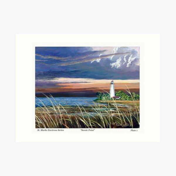 Scenic Point - St. Marks Light Art Print